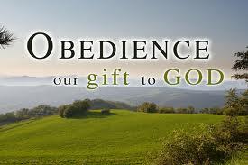 letstalkaboutlife365.com(obedience)