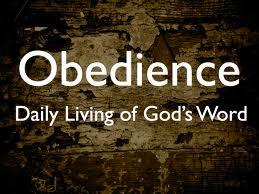 letstalkaboutlife365.com(obedience2)